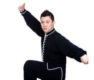 Chinese vechter Royalty-vrije Stock Fotografie