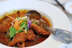 Chinese Vegetarian Mock Chicken Curry Stock Image