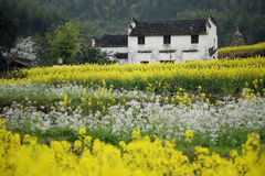 Chinese village Royalty Free Stock Image