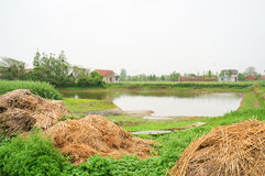 A Chinese village cottage and a small pond Stock Images
