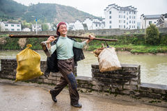Chinese villager Carrying Fresh Bamboo Shoots Stock Photography