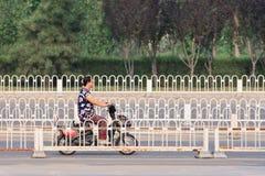 Chinese vrouw op een e-fiets, Peking, China Stock Foto's