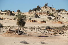 Chinese wall in Mungo National Park Stock Images