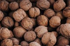 Chinese Walnut Stock Image