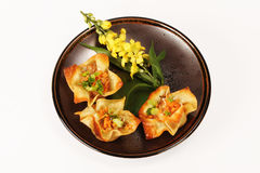 Chinese wantons Stock Image