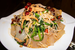 Chinese warm salad with jellyfish Royalty Free Stock Images