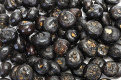 Chinese Water Chestnuts (Eleocharis dulcis) Royalty Free Stock Images