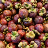 Chinese water chestnuts - Eleocharis dulcis. Fresh Chinese water chestnut fruits on market stall. Water chestnuts is native to Asia, Australia, tropical Africa royalty free stock images