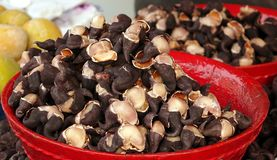 Chinese Water Chestnuts Stock Image