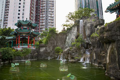 Chinese Water Garden High Rise Buildings Hong Kong Stock Image