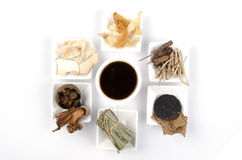 Chinese  water herbal medicine with ingredient Stock Photography