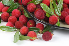 Chinese waxberry Royalty Free Stock Photos