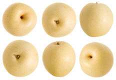 Chinese White Pear Royalty Free Stock Image