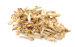 Chinese White Tea Royalty Free Stock Photography