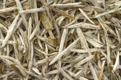 Chinese white tea as background Stock Photography