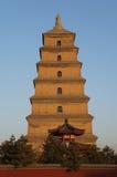 Chinese wilde de ganspagode van Xian Stock Foto