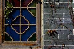 Chinese window and wall. Ivy cover royalty free stock image