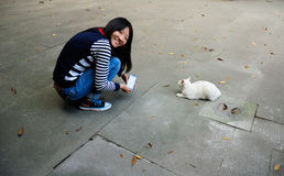 Chinese woman with a cat royalty free stock photo