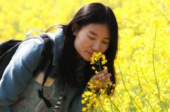 Chinese woman smelling rapeseed flowers Stock Photos