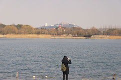 Chinese woman taking pictures. A chinese woman taking pictures near a lake within Chenshan Botanical Garden in Shanghai China Stock Photography