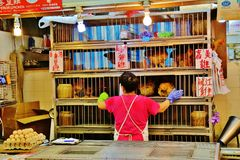 Chinese Woman tending chickens Stock Images