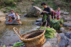 Chinese woman washes leaves of edible plants in rural river. Royalty Free Stock Photography