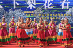 Chinese women dressed with traditional clothing dancing and singing during the Heqing Qifeng Pear Flower festival Royalty Free Stock Photos