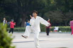 Chinese wushu-taiji Royalty Free Stock Image