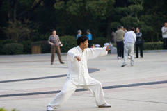 Chinese wushu-taiji Stock Photos