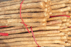 Chinese yam Royalty Free Stock Photography