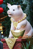 Chinese year of the pig stock images