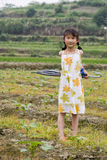 Chinese young girl. With  pigtail  catches an umbrella Royalty Free Stock Photography