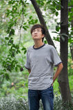 A Chinese young man. Was looking up something which was on the tree Royalty Free Stock Photo