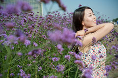 Chinese young women playing in the vast lavender Royalty Free Stock Image