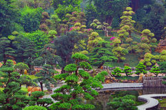 Chinese zen garden. During spring with various colorful foliage, walkway and a tiny pond Stock Photo