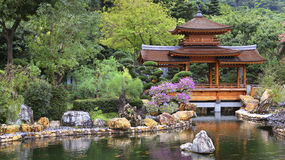 Chinese zen garden with pagoda. Chinese buddhist zen garden with pagoda and spring foliage and green pond Royalty Free Stock Photos
