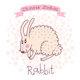 Chinese Zodiac - Rabbit Royalty Free Stock Image