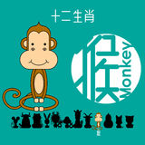 Chinese zodiac sign monkey with Chinese character `monkey`. Stock Images