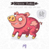 Chinese Zodiac. Sign Pig. Vector illustration Stock Image