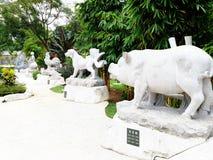 Chinese Zodiak stock images