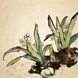 Chinesische Blume lizenzfreie abbildung