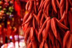 Chinesische Dekorationen des roten Pfeffers Lizenzfreie Stockfotos