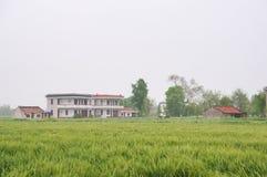Chinesische Dorfhäuser und Ackerland Stockfotografie