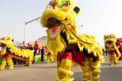Chinesische Feier des neuen Jahres Lizenzfreies Stockfoto