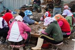 Chinesische Frauen, die im Fischerdorf arbeiten Stockfotografie