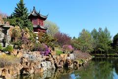 Chinesische Gartenblumen stockbilder