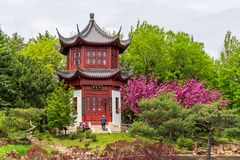 Chinesische Gartenpagode an botanischem Garten Montreals stockfotos
