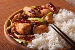 Chinesische Küche: Kung Pao Huhn und Reis-Nahaufnahme horizontal Lizenzfreie Stockbilder