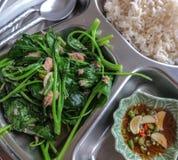 Chinesische komplette Mahlzeit. Lizenzfreies Stockfoto