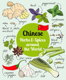 Chinesische Kräuter und Gewürze Lizenzfreie Stockfotos